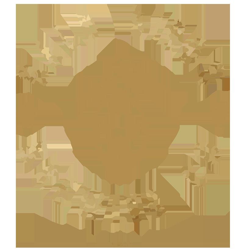 Bald Birds Brewing Co.
