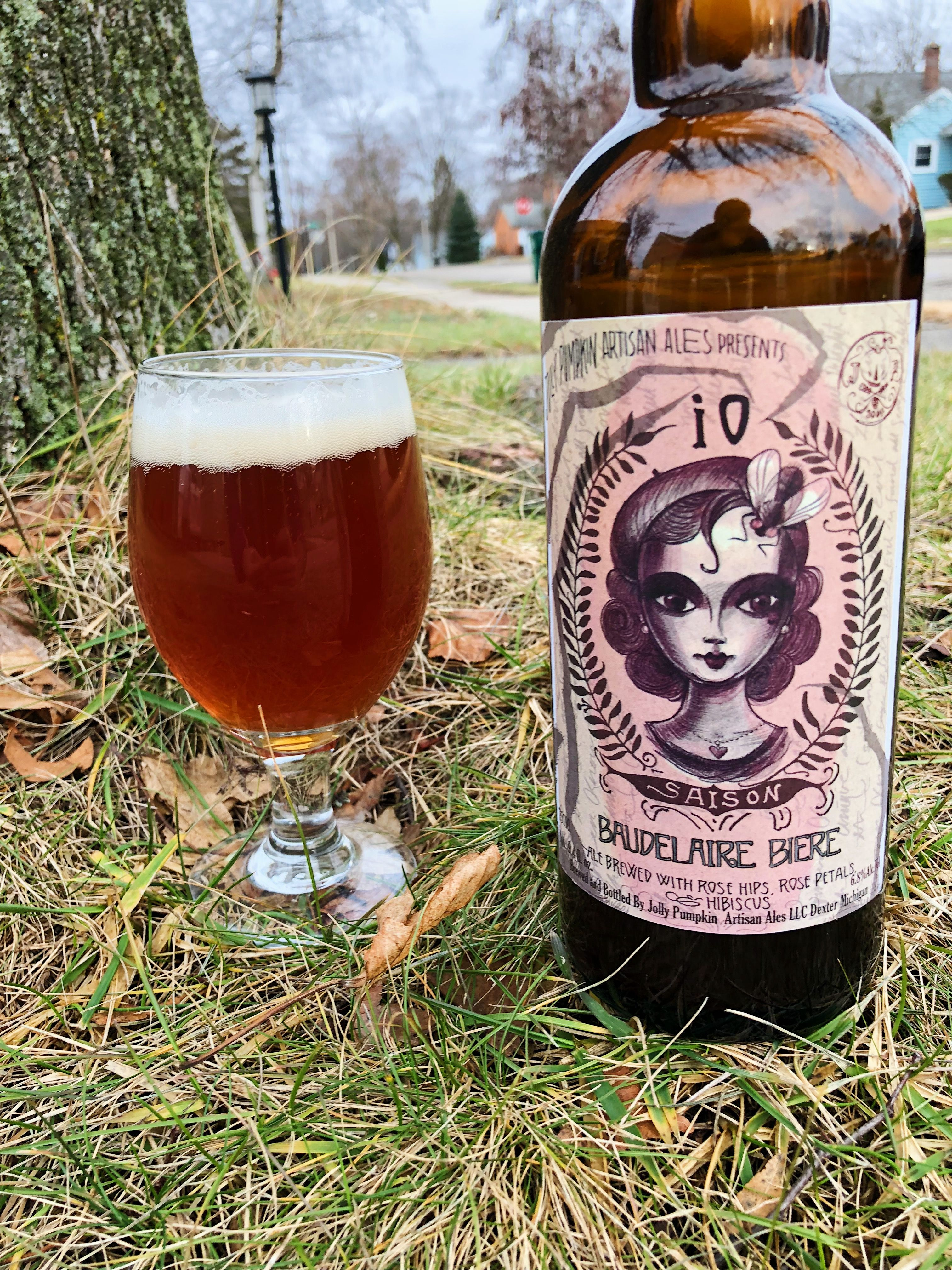 iO Saison beer bottle