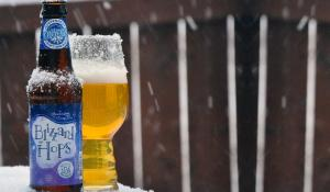 Twelfth Beer of Christmas 2017: Tröegs Blizzard Hops